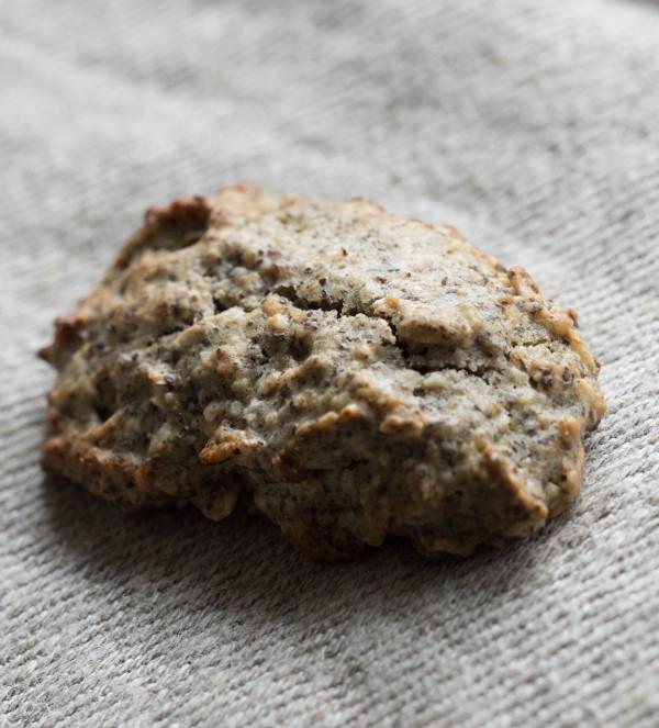 Biscuit Apéritifs Farine de Chanvre